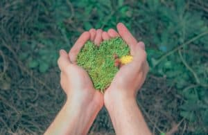 """Treat the Earth well. It was not given to you by your parents. It was loaned to you by your children."" Kenyan Proverb"