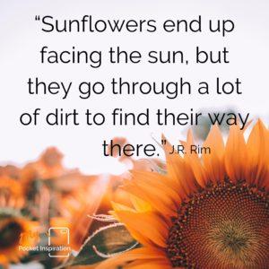 #SunflowerDay