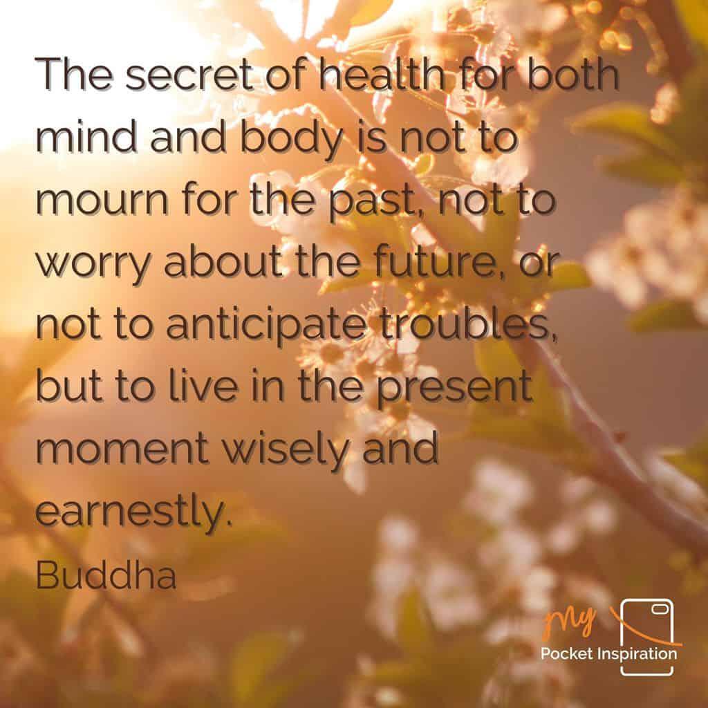 Your Wednesday Wellness Wisdoms