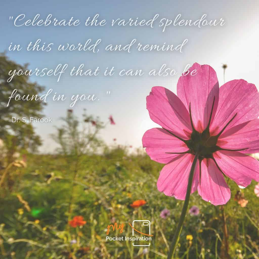 Celebrate Your Existance